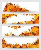 Vector banners with orange pumpkins and autumn leaves. — Stock Vector