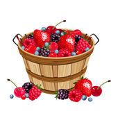 Wooden basket with various berries. Vector illustration. — Stock Vector