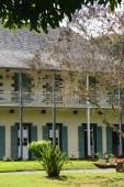 Picturesque garden of Pamplemousse in Mauritius Republic  — Stock Photo