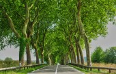 France, a country road in Val d Oise — Stock Photo
