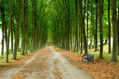 France, the classical park of Marly le Roi — Stock Photo