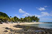 Живописная область la пуанта aux canonniers в Маврикии — Стоковое фото