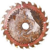 Two circular saw blades  — Stock Photo