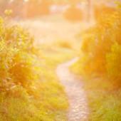 De focused path on sunset — Stock Photo