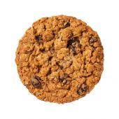 Oatmeal Raisin Cookie isolated — Stock Photo