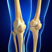Human knee artwork — Stock Photo
