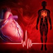 Human heart beat diagram — Stock Photo #55576833
