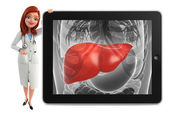 Young Doctor with liver anatomy — Stock Photo