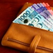 Cash money in a leather wallet — Stock Photo #58928765