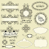 Vintage ornaments and frames, vignettes, calligraphic design ele — Stock Vector
