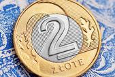 Polish zloty — Stock Photo