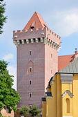 Royal Castle, Poznan — Stock Photo