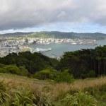 Wellington cityscape, NZ — Stock Photo #53768027