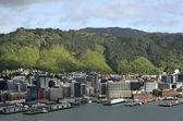 Wellington downtown cityscape, NZ — Stock Photo