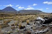 Fäste ngauruhoe landskap, Nya Zeeland — Stockfoto