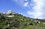 Lifta village ruins near Jerusalem. — Stock Photo