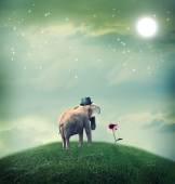 Elephant with hat staring at flower — Zdjęcie stockowe