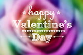 Valentine colorful rose — Stock Photo