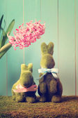 Easter bunnies with hyacinth — Stock Photo