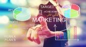 Businessman pointing at marketing diagrams — Stock Photo