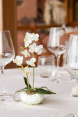 Ready restaurant table and orchid plant — Stock Photo