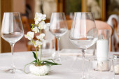 Elegant dresed table with flasses and little orchid plant — Stock Photo