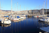 Panoramic view of Trieste touristic harbor — Stock Photo