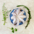 Fresh octopus inside blue bowl with aromatic herbs — Stock Photo #73981547
