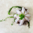 Fresh octopus with aromatic herbs — Stock Photo #73981575