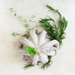 Fresh octopus with aromatic herbs — Stock Photo #73981801