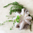 Fresh octopus with aromatic herbs — Stock Photo #73981907