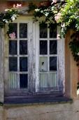Gamla strippad fönster med rosenträdgård runt — Stockfoto