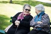 Two senior ladies chatting friendly to the park — Stock Photo