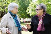 Two senior ladies walking to the park — Stock Photo