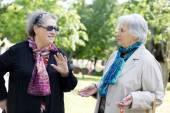Two senior ladies talking  friendly to the park — Stock Photo