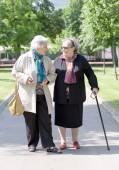 Senior ladies walking haPPY TO THE PARK — Stock Photo