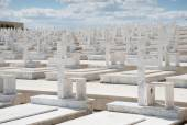 Memorial Military cemetery in Nicosia, Cyprus — Stock Photo