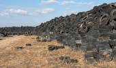 Used Tires in a  Recycling Yard — Stock Photo