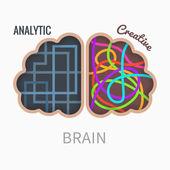 Brain hemispheres — Stock Vector