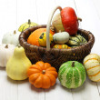 Colorful pumpkin and squash collection — Stock Photo #53122477