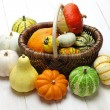 Colorful pumpkin and squash collection — Stock Photo #53122479