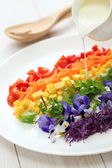 Rainbow salad — Stock Photo