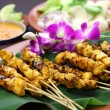 Chicken satay with peanut sauce, indonesian skewer cuisine — Stock Photo #67262523