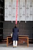 Kofukuji temple complex — Стоковое фото