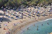 Beach of Vai Palm Forest Crete Greece — Stock Photo