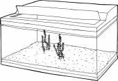 Aquatic Plants in Tank Outline — Stock Vector