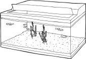 Outline of Open Aquarium with Fish — Stock Vector