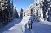 Back country skier (ski touring)  — Stock Photo