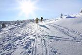 Back country skier (ski touring)  — ストック写真