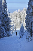 Back country skier (ski touring) — Stock Photo